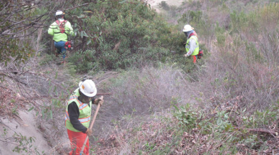 Crews working on weed abatement on an oilfield in Ventura County