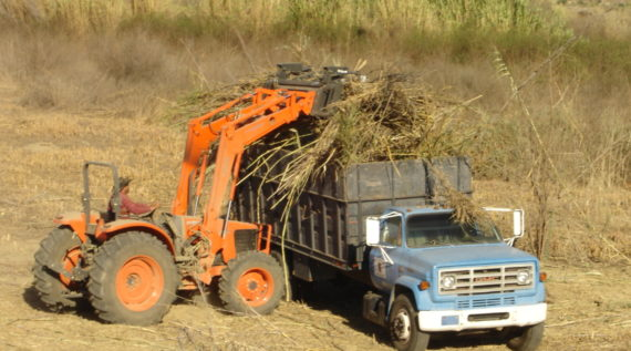 environmental restoration ventura county