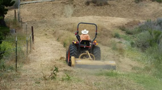 Ventura County Weed Abatement Services