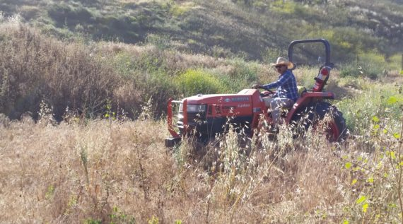 ventura county brush removal project