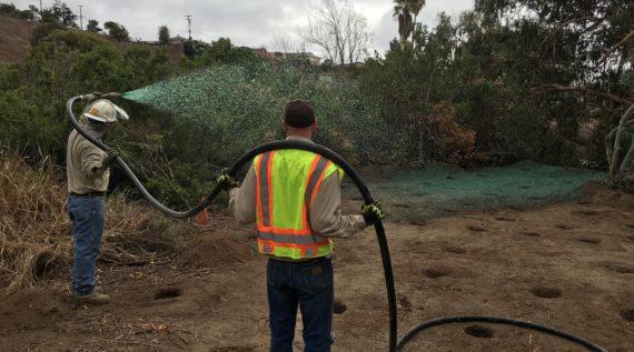 hydroseeding to restore habitat