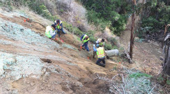 hillside hydroseeding