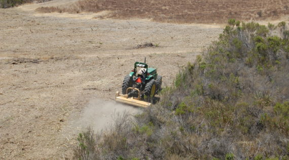 Weed abatement and brush removal in Moorpark