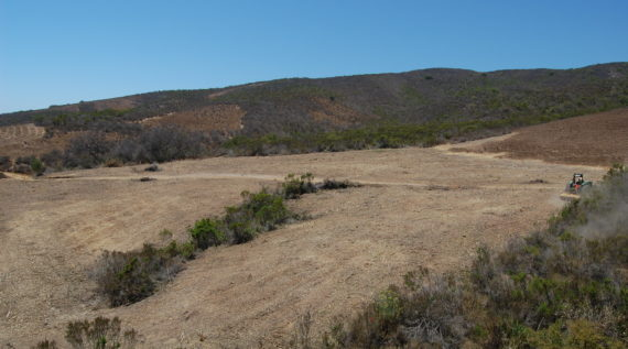 Ojai weed abatement project