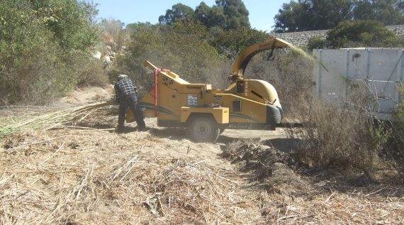 Ventura River cleanup project